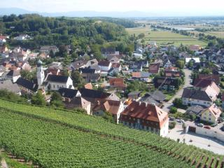 Village Hecklingen, View from the Castle