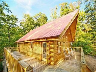 1 Bedroom with Tree House Hot Tub, Sevierville