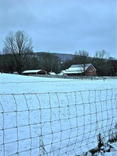 Farm next door in winter