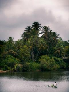 On the laguna