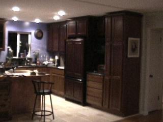 paneled refrigerator & butcher block island