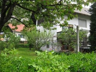 Large apartment with garden not far away from Bled