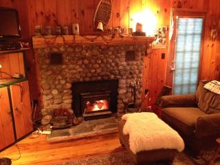 Delightful Mountain Cottage on pristine lake, Chestertown