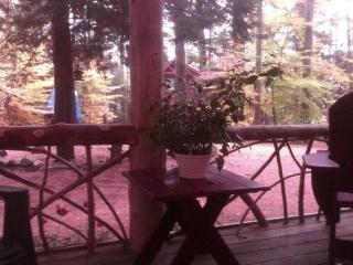 Delightful Mountain Cottage on pristine lake