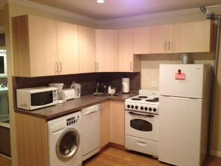 Kitchen (Cabinets & Appliances)