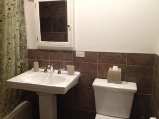 Bathroom (Shower, Sink, Cabinet & Toilet)