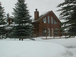 Log Home in Winter