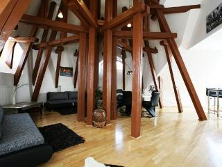 Attic Kozi - Superior three bedroom apartment, Prague