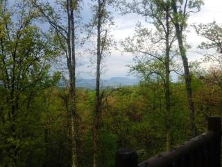 Beautiful Mountain Views from the back deck