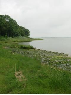 3 mile Harbor