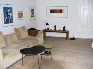 Large Copenhagen apartment at Frederiksberg