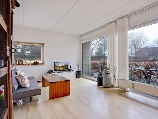 Cosy Copenhagen apartment near Frederiksberg Garden