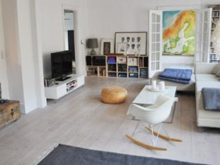 New modern Copenhagen apartment next to Noerreport, Copenhague