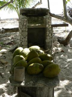 Grill on the beach. Foreground: Fresh coconuts are available year-roundin abundance.