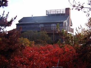 Nantucket 4 Bdrm, Sleep Loft, Jacuzzi, Ocean Views, widow's walk, near beach