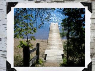 Dock steps from cabin door