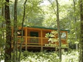 Ducks' Nest Lake View Log Cabin with Hot Tub!