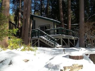 Cozy Cottage Nestled in the Pines, Walk to Town, Idyllwild
