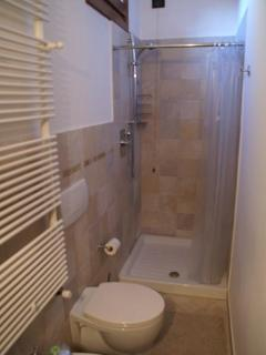 Bathroom and shower - master bedroom