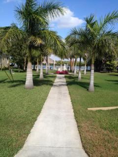 Queen palms lead the way to the dock