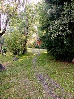 Path to cabin