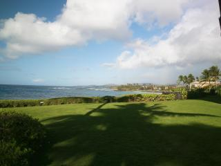 Your all world view.  The entire south shore of Kauai, looking past Poipu Beach