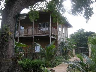 Chez Milady Apartments, Utila