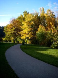 Park Nearby with Nice Walk Way