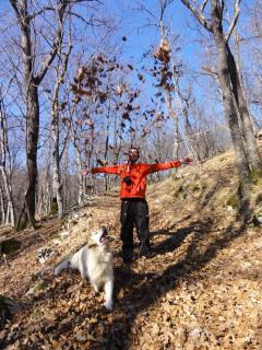 Numerous walking trails