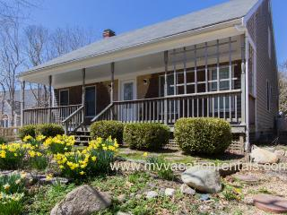 WALCN - Island Grove House,  All newly remodeled, AC in Bedrooms, WiFi, Porch