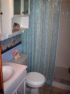 Bathroom #2 shower stall
