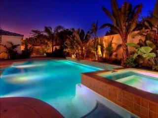 Gorgeous Luxury Pool home, San Diego