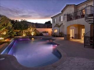 Heated luxury pool and spa