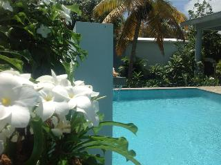 Garden House - Four Bedrooms, Sexy Pool and Porches, Isla de Vieques