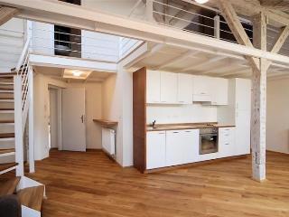 Luxury 3-Bedroom apartment in Residence Kozna, Praga