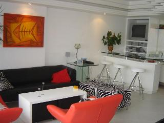 (#147) Very Nice 3bd in Ipanema with a great view, Rio de Janeiro