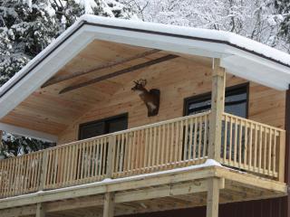 NEW RENTAL-Adirondack Carriage House Style Rental
