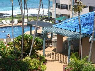 Kona Reef One Bedroom Oceanview Condo End Unit