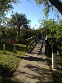 Boardwalk in Nature Park