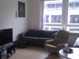 Copenhagen apartment with great location at Noerreport