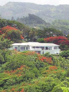 Caribella at Calivigny Gardens, Grenada