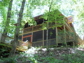$99/night for party of 2-FISHING BEAR Cabin, Cherry Log