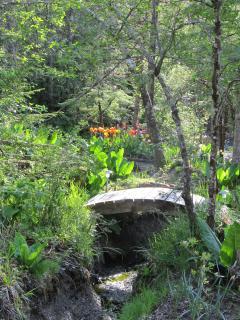 Garden trails.