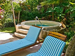 Riviera Maya Suites 2 Bedroom apartment with garden view. Free Wifi., Playa del Carmen
