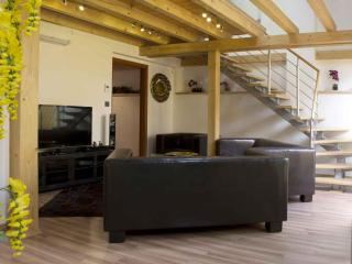Attic Olivova II - Luxury four bedroom apartment, Prag