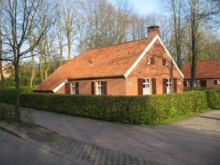 Vacation Home in Papenburg - 861 sqft, quiet but central location, Lake view with natural garden (#…