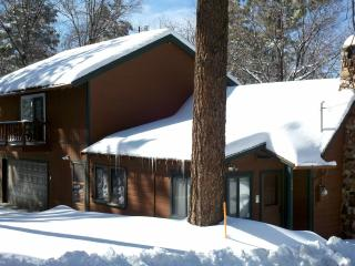 Rustic 90yr Old Cabin/Quiet Culdesac Street/HDTV/Hot Tub/Netflix/Forest Trails, Big Bear Region