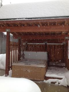 Covered hot tub in the snow.
