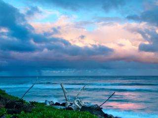 Bargain   price. Great oceanfront , 2 bedrooms., Kapaa
