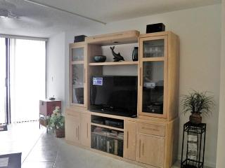 Entertainment Center w 40' Samsun LED LCD TV, Stereo, library w movies, music, books